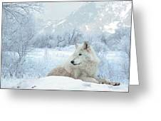 Cold Longings Greeting Card
