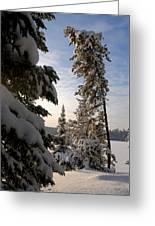 Cold Morning On Boot Lake Greeting Card