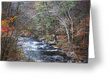 Cold Mountain Stream Greeting Card