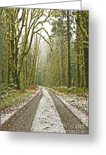 Cold Paths Greeting Card