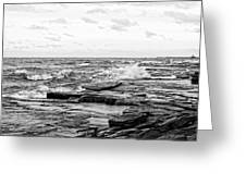 Cold Shore Greeting Card