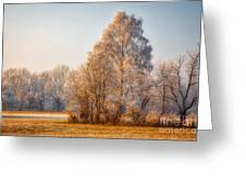 Cold Winter Evening In The Valley Greeting Card