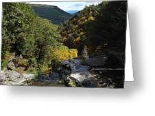 Cole's Roost The Kaaterskill Clove Greeting Card