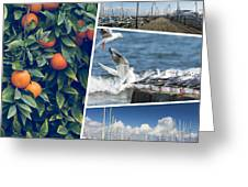 Collage Of Cyprus Images Greeting Card