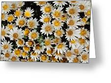 Collective Flowers Greeting Card