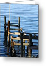 Colonial Beach Pilings Greeting Card