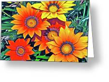 Color 53 Greeting Card