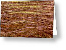 Color Abstract Greeting Card
