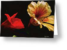 Color And Light Suspended Greeting Card