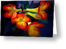 Color Burst Greeting Card