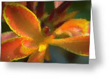 Color Burst Greeting Card