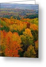 Color Burst Vertical Greeting Card