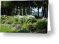 Color Combination Flowers Cc74 Greeting Card