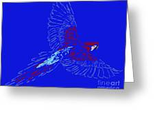 Color In Flight Greeting Card