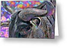 Color In My Eyes Greeting Card