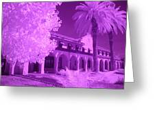 Color Infrared Greeting Card