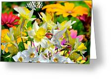 Color Of Nature Greeting Card