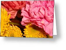 Color Of Spring Greeting Card