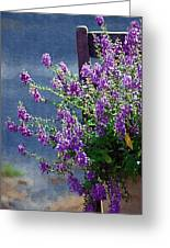 Color Purple Greeting Card