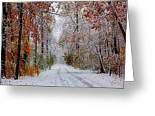 Color Tunnel In The Sourlands Greeting Card