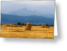 Colorado Agriculture Farming Panorama View Greeting Card