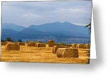 Colorado Agriculture Farming Panorama View Pt 2 Greeting Card