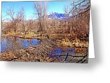 Colorado Beaver Ecosystem Greeting Card