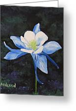 Colorado Blue Greeting Card