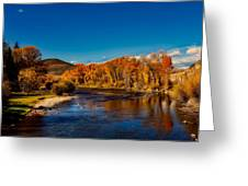 Colorado Cottonwoods In Autumn Greeting Card
