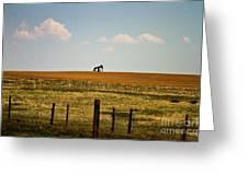 Colorado Crude Greeting Card