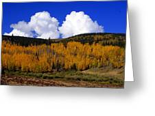 Colorado Fall 2 Greeting Card