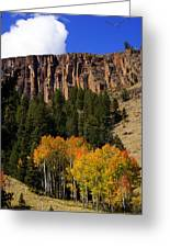 Colorado Fall 4 Greeting Card by Marty Koch