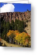Colorado Fall 4 Greeting Card