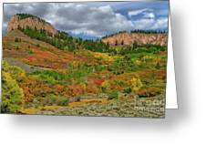 Colorado Fall Colors 1 Greeting Card