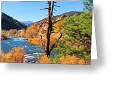 Colorado Fall Greeting Card