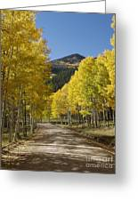 Colorado Fall Splendor Greeting Card