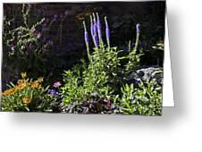 Colorado Flowers Greeting Card
