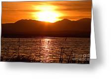 Colorado Marsh At Sunset Greeting Card