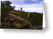 Colorado Red Rocks Greeting Card by Barbara Schultheis