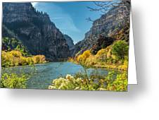 Colorado River And Glenwood Canyon Greeting Card by Jemmy Archer