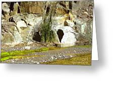 Colorado River Bank Showing High Water Mark Greeting Card