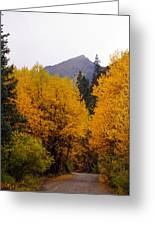 Colorado Road Greeting Card