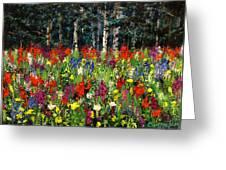 Colorado Rockies Wildflowers Greeting Card