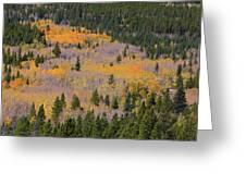 Colorado Rocky Mountains Autumn Colors Greeting Card