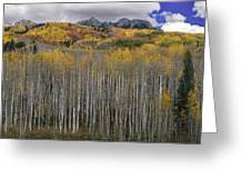 Colorado Splendor Greeting Card