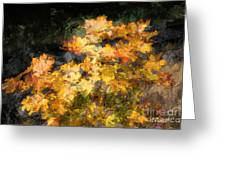 Colored Maple Leaves Greeting Card