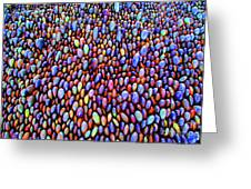 Colored Rocks Or Eggs Greeting Card