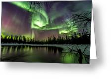 Colorful Auroras Greeting Card