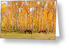 Colorful Autumn High Country Landscape Greeting Card