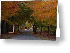 Colorful Byway Greeting Card